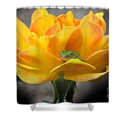 Tree Frog Series 2 Shower Curtain