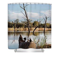 Tree Image Shower Curtain by Douglas Barnard