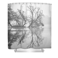 Tree In A Lake Shower Curtain by Pravine Chester