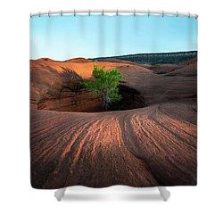 Tree In Desert Pothole Shower Curtain