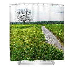 Tree In Field 2 Shower Curtain
