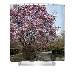 Tree In Pink Shower Curtain