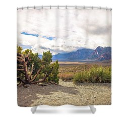 Tree In Red Rock Canyon Shower Curtain