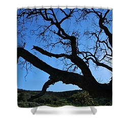 Tree In Rural Hills - Silhouette View Shower Curtain