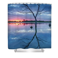 Tree In Silhouette Shower Curtain by Jae Mishra