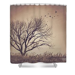 Shower Curtain featuring the photograph Tree by Juli Scalzi