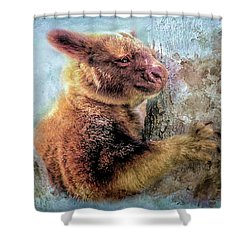 Shower Curtain featuring the photograph Tree Kangaroo by Wallaroo Images
