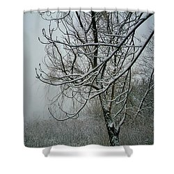 Tree Lace Three Shower Curtain