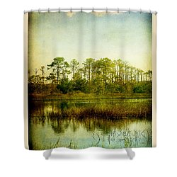 Tree Laces Shower Curtain by Linda Olsen