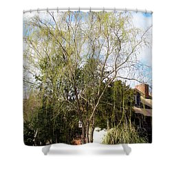 Tree Shower Curtain by Lanjee Chee