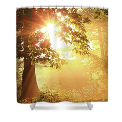 Tree Light-god's Rays Shower Curtain