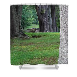 Tree Line Shower Curtain by Eric Liller