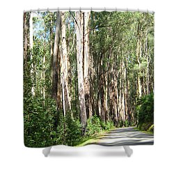 Tree Lined Mountain Road Shower Curtain