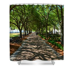 Tree Lined Path Shower Curtain