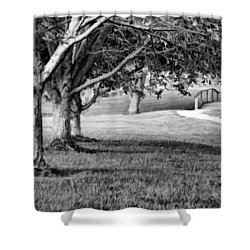 Tree-lined Path To Footbridge - B/w Shower Curtain