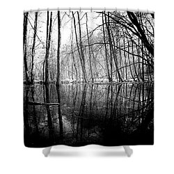 Tree Lines Shower Curtain