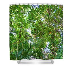 Shower Curtain featuring the photograph Tree M2 by Francesca Mackenney