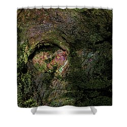 Shower Curtain featuring the photograph Tree Memories # 18 by Ed Hall