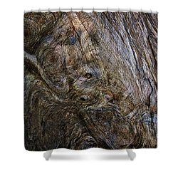 Shower Curtain featuring the photograph Tree Memories # 19 by Ed Hall