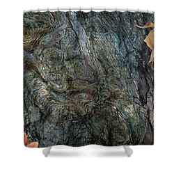 Shower Curtain featuring the photograph Tree Memories # 33 by Ed Hall