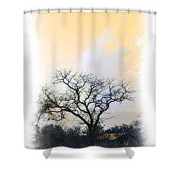 Shower Curtain featuring the photograph Tree Of La Vernia II by Carolina Liechtenstein