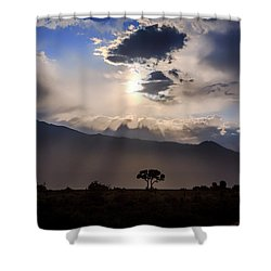 Shower Curtain featuring the photograph Tree Of Light by Cat Connor
