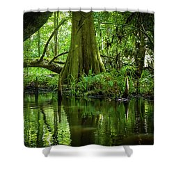 Tree Of My Soul Shower Curtain