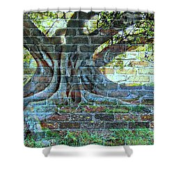 Tree On A Wall Shower Curtain