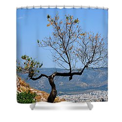 Tree On Acropolis Hill Shower Curtain