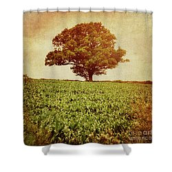 Shower Curtain featuring the photograph Tree On Edge Of Field by Lyn Randle