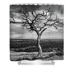 Tree On Enchanted Rock In Black And White Shower Curtain