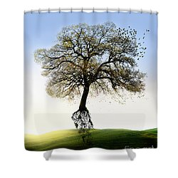 Tree On The Move Shower Curtain