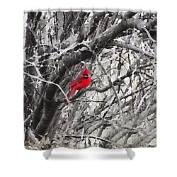 Shower Curtain featuring the digital art Tree Ornament by Shelli Fitzpatrick