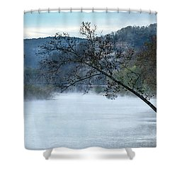 Tree Over Gasconade River Shower Curtain by Jae Mishra