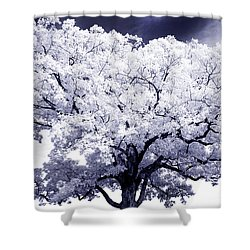 Shower Curtain featuring the photograph Tree by Paul W Faust - Impressions of Light