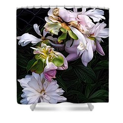 Tree Peony Shower Curtain by Alexis Rotella