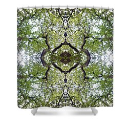 Tree Photo Fractal Shower Curtain