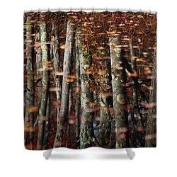 Tree  Reflect Shower Curtain by Karol Livote