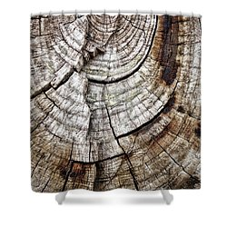 Tree Rings - Photography Shower Curtain