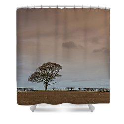 Shower Curtain featuring the photograph Tree by RKAB Works