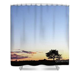 Tree Silhouette By Twilight Shower Curtain by Kennerth and Birgitta Kullman
