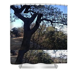 Tree Silhouette Collage Shower Curtain