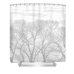 Shower Curtain featuring the photograph Tree Silhouette Gray by Jennie Marie Schell