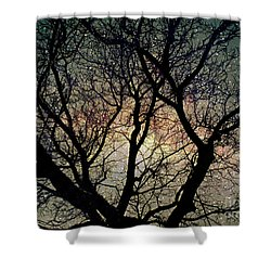 Shower Curtain featuring the photograph Tree Silhouette With Stars. by Yulia Kazansky