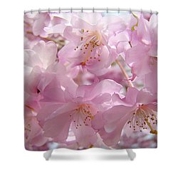 Tree Spring Pink Flower Blossoms Art Print Baslee Troutman Shower Curtain by Baslee Troutman