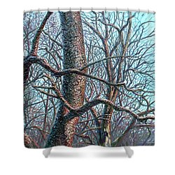Tree Study Shower Curtain