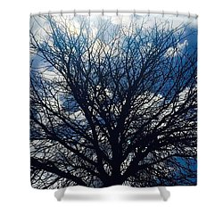 Tree Sun And Blue Sky Shower Curtain by Andre Brands