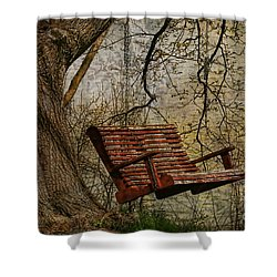 Tree Swing By The Lake Shower Curtain by Deborah Benoit