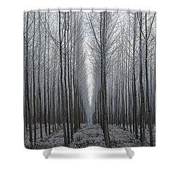 Tree Symmetry Shower Curtain