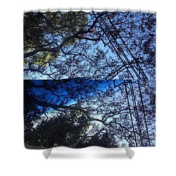 Tree Symphony Shower Curtain